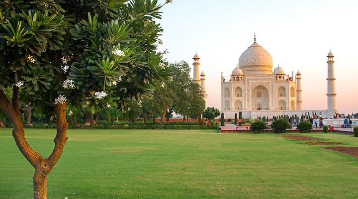 india v2