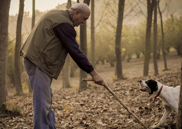 France Truffle Hunting Tour