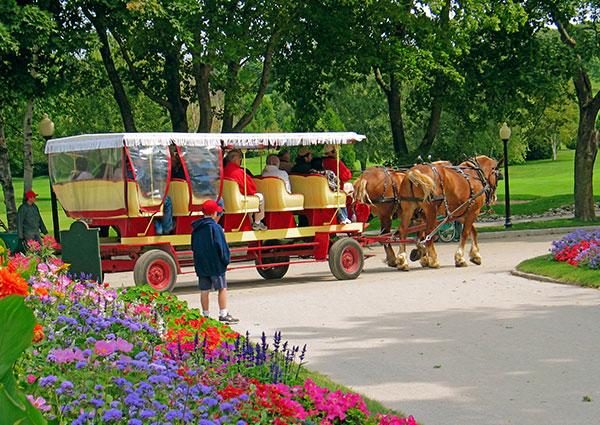 Mackinac IslandTulipFestival carousel3