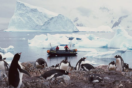 AdventureToAntarctica Search