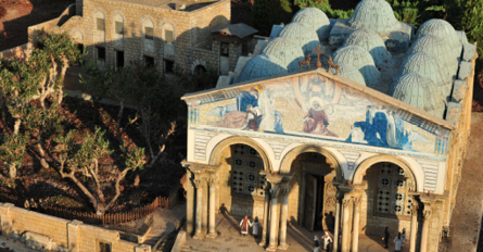 Trip to Israel | Israel Tour Package | Collette Iconic Israel