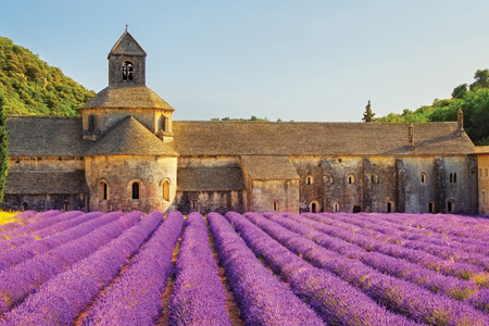 journey through southern france search img sm