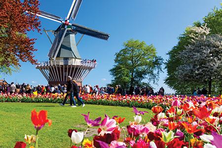 NetherlandsBelgiumFranceftKeukenhof Search
