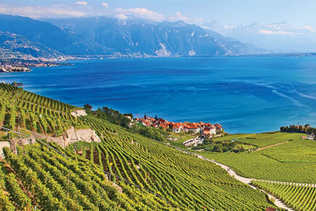 SwitzerlandHiddenTrails search Lavaux