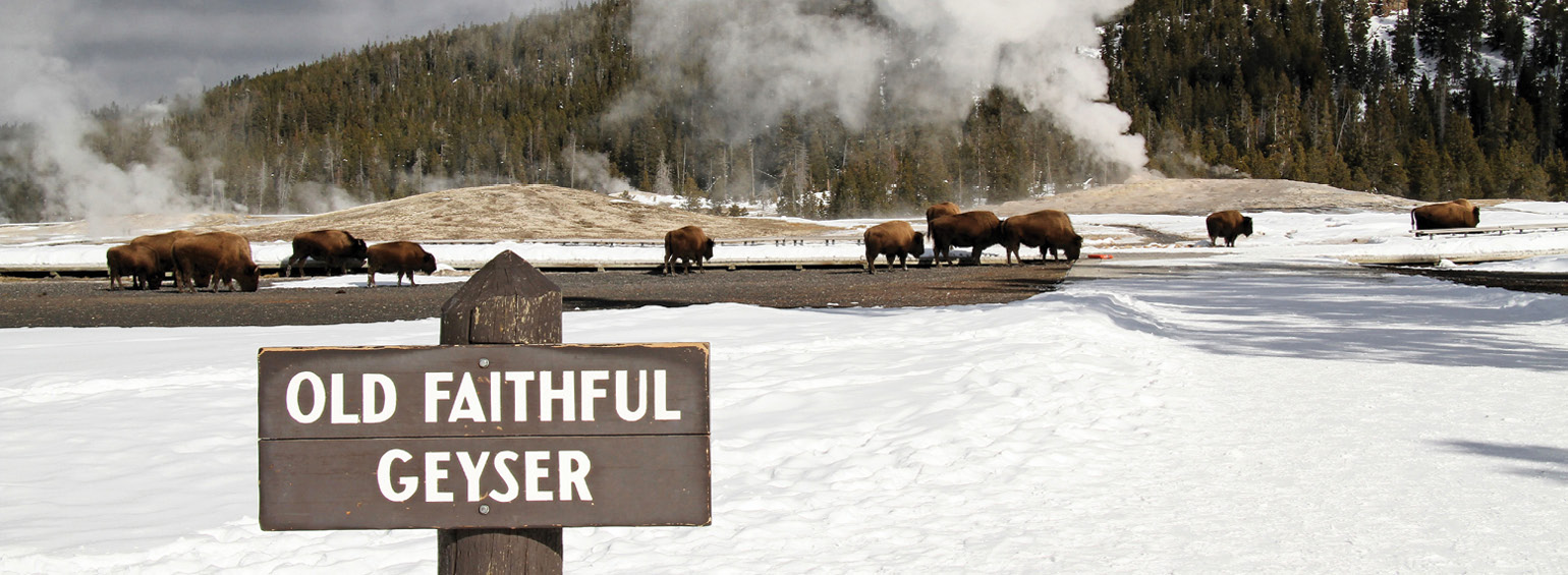 https://i.gocollette.com/tour-media-manager/tours/north-america/usa/552/packages/master-package/top-carousel/winterinyellowstone_hero1_oldfaithful.jpg