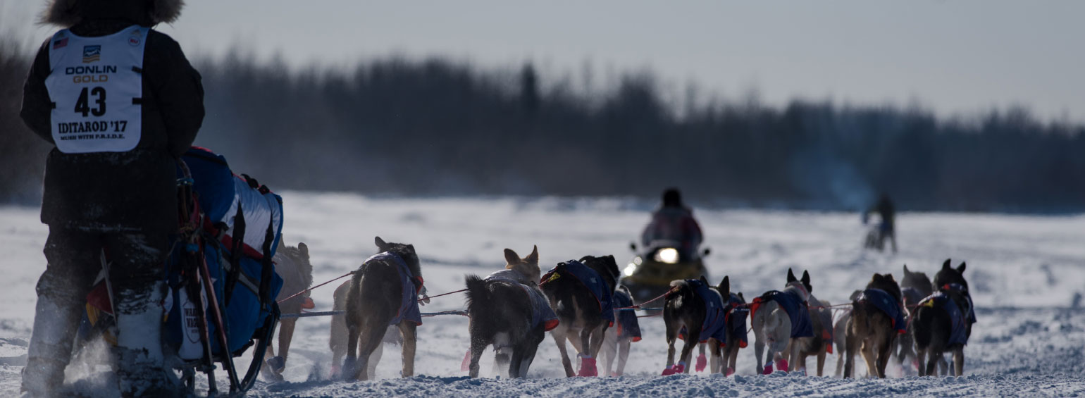 https://i.gocollette.com/tour-media-manager/tours/north-america/usa/660/packages/alt-package/top-carousel/alaskas-northern-lights-featuring-iditarod_hero1.jpg